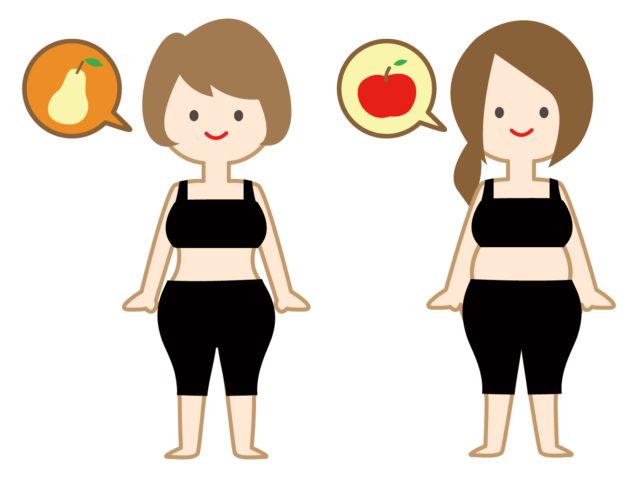 肥満 リンゴ型 洋梨型